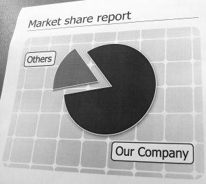 854196 market share report a pie chart